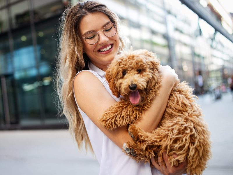 beauty woman with her dog playing outdoors LN2XF4U