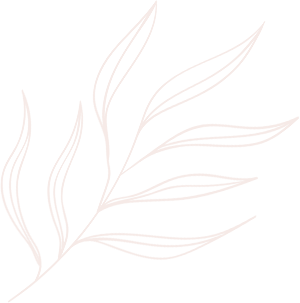 elements line drawing leaves illustrations and art brushes 7UJ4G2S 2